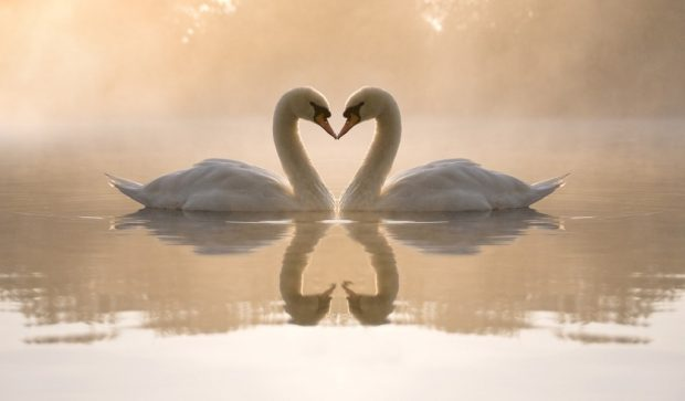 Вера и Любовь