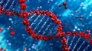 Что слышат наши гены?