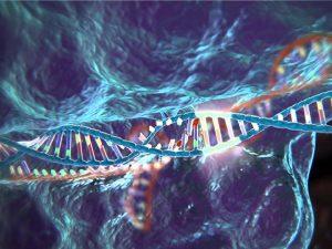 За чистоту речи - ДНК